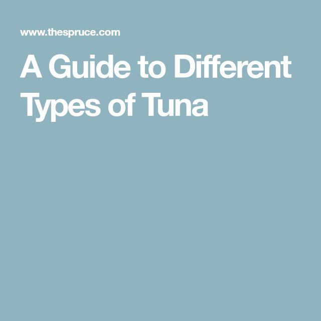 A Guide to Different Types of Tuna