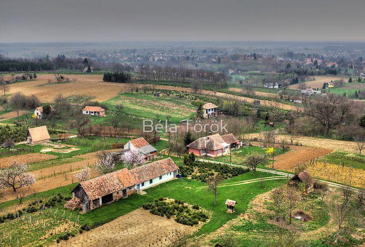 HUNGARY | flat,800x800,070,f.jpg