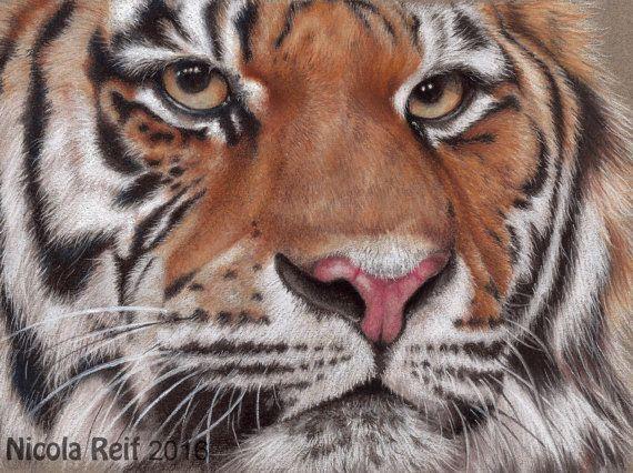 The Eyes of a Hunter. Original Pastel Painting by NicolaReifArt. Pet portrait
