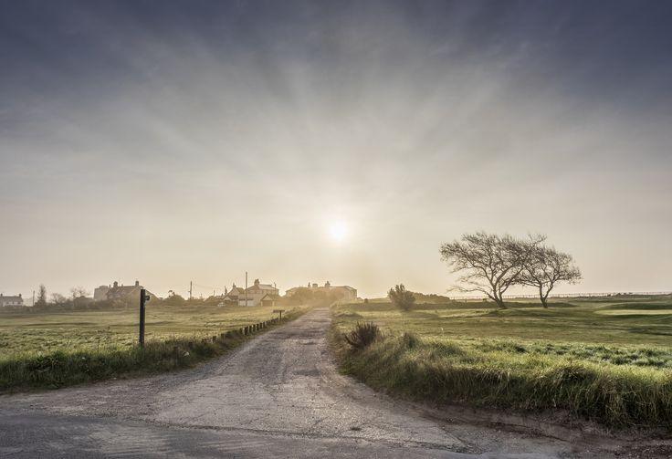 Dawn on the Heath by Nigel Lomas on 500px