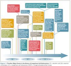Figure 1. Timeline: Major Events in the History of Langerhans Cell Histiocytosis.