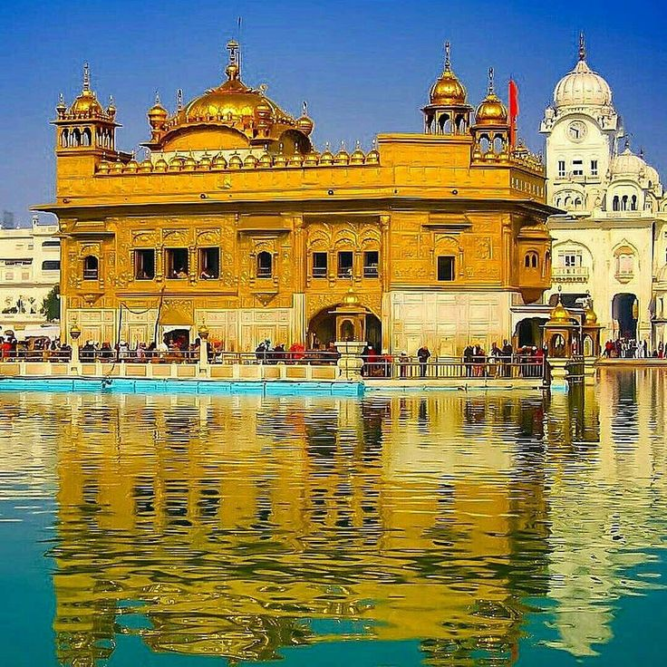 I have seen all places but there's no place like you (English translation)  . . . #asklocal #goldentemple