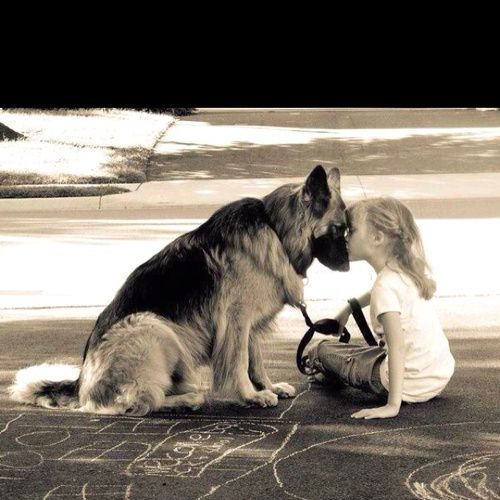 Oh, how I love this photo, heartwarming connection between a girl and her dog. kudos to the photographer!!!