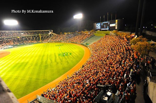 #japan #kobe #baseball #nikon #giants #orange #glove #powerspot #igers #igersjp #green #power  #base #ball #photokonakamura #picture #beautiful #picture #npb #photographer #ニコン #野球 #ほっともっと #ジャイアンツ #ボール #パワースポット  #写真家 #写真 #グローブ #巨人