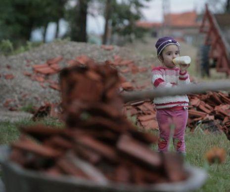 Furtuna a făcut ravagii în județul Timiș. Mai multe case au rămas fără…