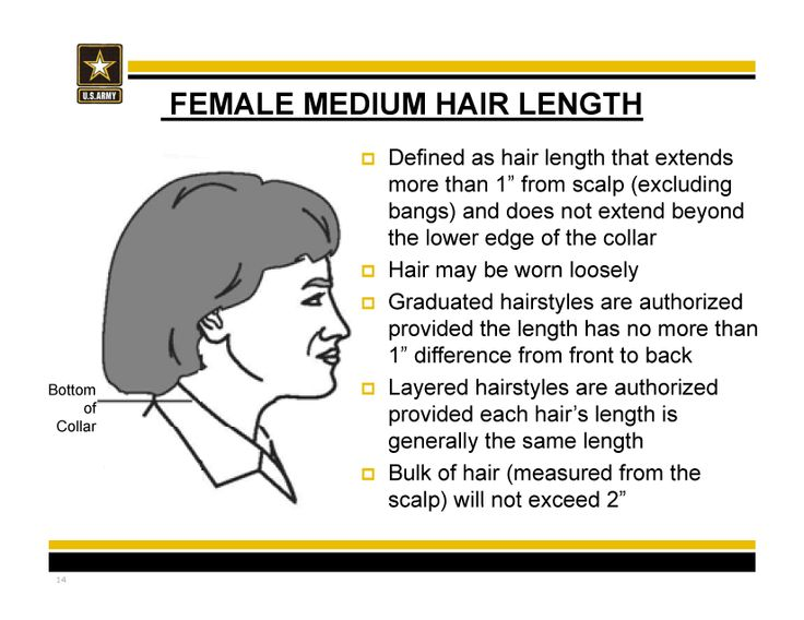 New Army Hair Regulations Ar 670 1 As Of 31 March 2014 Mediumlength Hair Military Hair Army Hair Regulations Womens Hairstyles