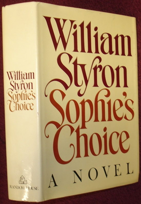 What should I write my essay on Sophie's Choice about?