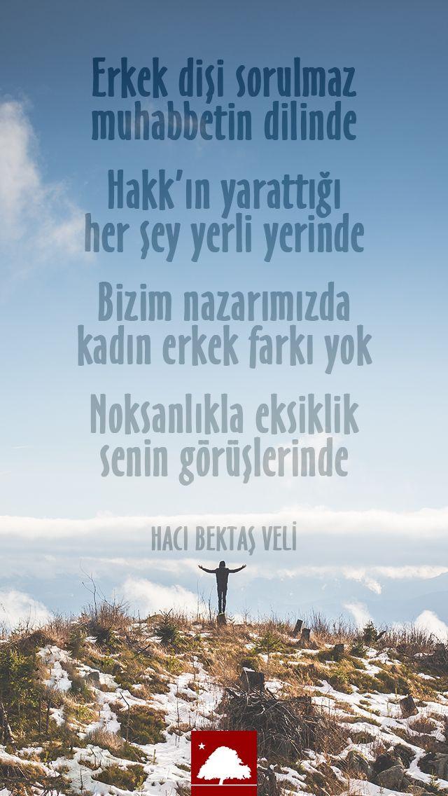 🌹Hacı Bektaş Veli : Erkek dişi sorulmaz muhabbetin dilinde... Anadolu Çınarları poster