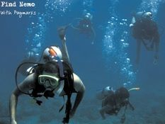 We offer Scuba Diving In India our divers an unparalleled choice of dive travel in India. This 4 day course gets you an internationally valid SSI or PADI certification card, which will allow you to dive anywhere in the world. http://www.pugmarks123.com/be-a-certified-scuba-diver.html