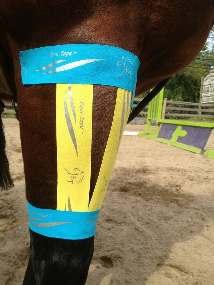 There is a taping pattern for almost any area of the body. Learn different tape applications at www.equi-tape.com THIS STUFF WORKS