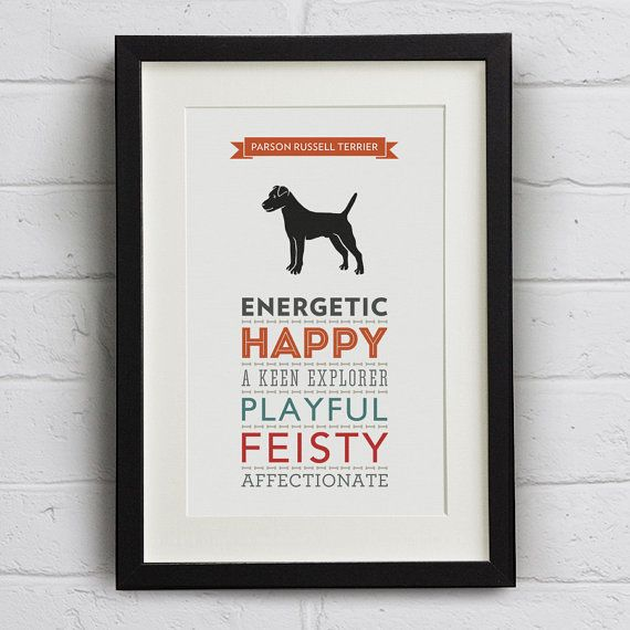 These lovely Parson Russell Terrier prints display the common characteristics of a Parson Russell Terrier in a range of complimentary typefaces