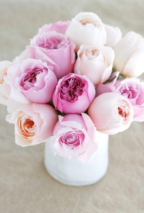 lovely pinks: Flowers Gardens, Pink Flowers, Soft Pink, Colors Palettes, Fresh Flowers, Gardens Rose, Pink Rose, English Rose, Pink Peonies