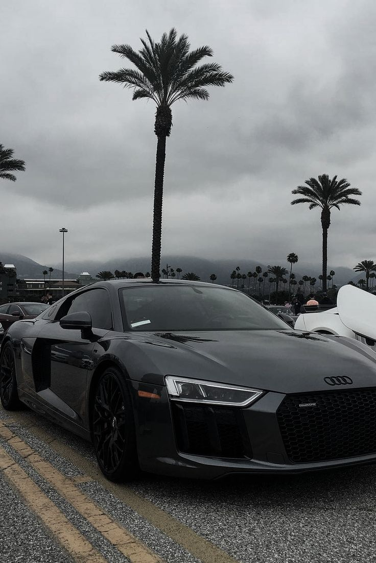 Best Cars Images On Pinterest Fancy Cars Cars And Cool Cars - Audi tumblr