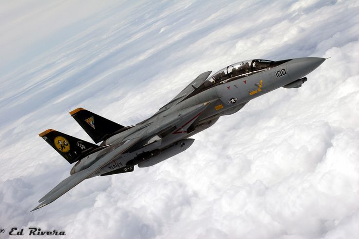 """The Grumman F-14 Tomcat : Warrior of the Cold War - VF-31 """"Tomcatters"""" CAG F-14D BuNo 164342 - 'Sink Ex' 6-7-2006"""