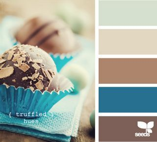 Brown & turquoise - this is kinda the color scheme in my house now....am wanting to add a pop of color (not red)...suggestions??: