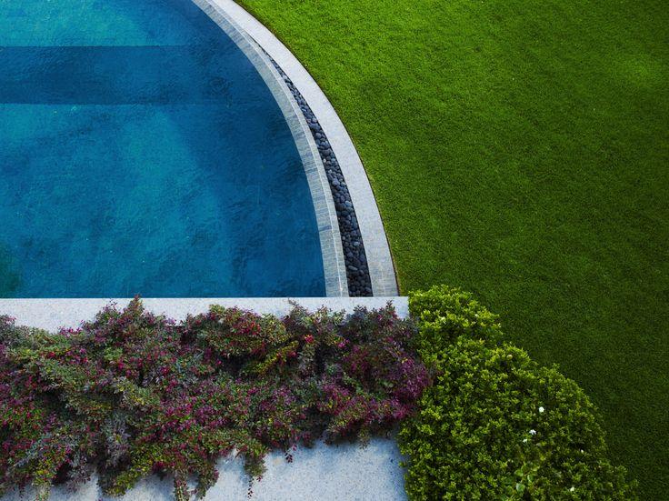 Loropetalum and Gardenia sp. with pool