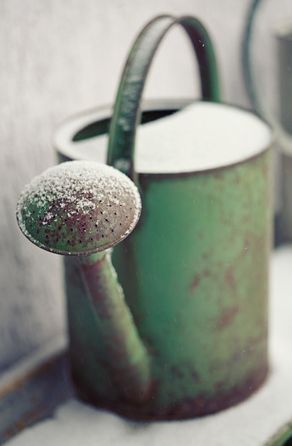 ViNtaGe Watering Can Old Apple-Green Paint...