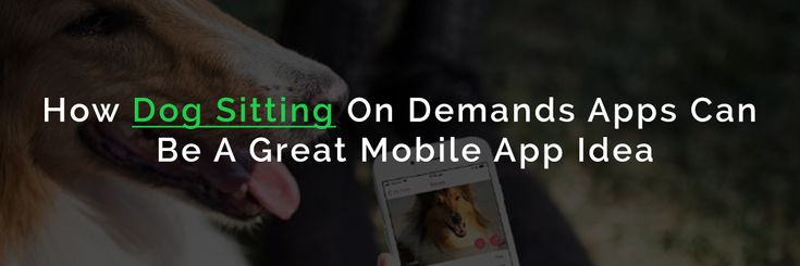 A new Startup Category: On-Demand #Dog Sitting #App For Busy Dog Owners