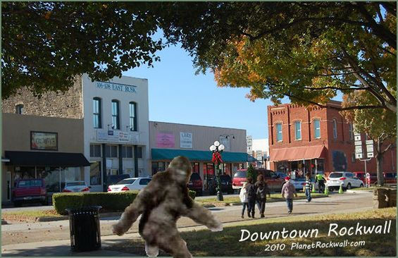 "bigfoot: Someone Saw Sasquatch in Rockwall, and America's ""..."