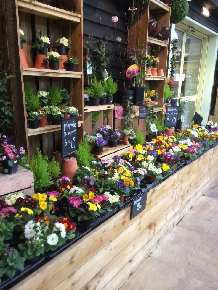 Timmermans Garden Centre Nursery Outdoor Retail Home Lifestyle Plants Visual Merchandising Layout Landscape Www