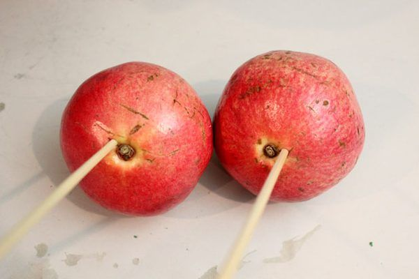 Put skewers in pomegranates
