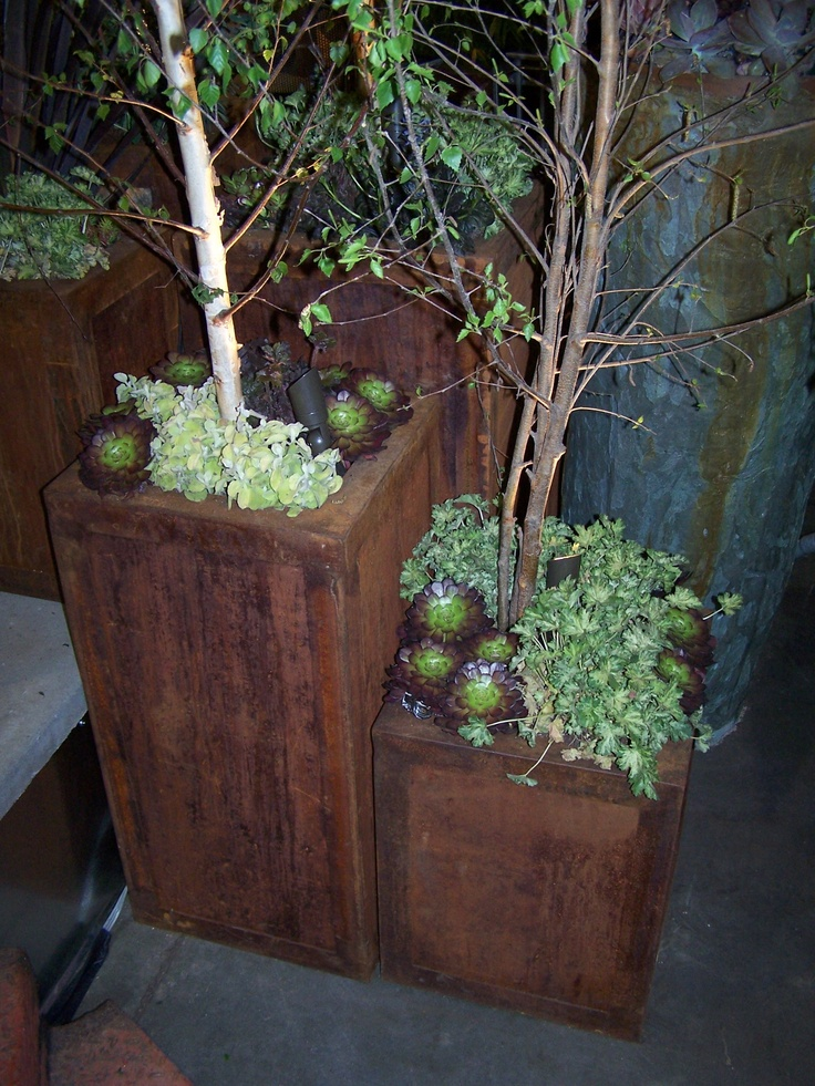 Love these rusty steel planters from the San Francisco Garden Show created by Rebecca ColeDesigns.