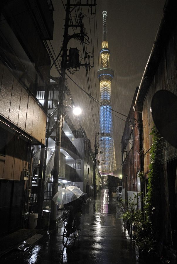 Tokyo Sky tree soars as tallest broadcast tower