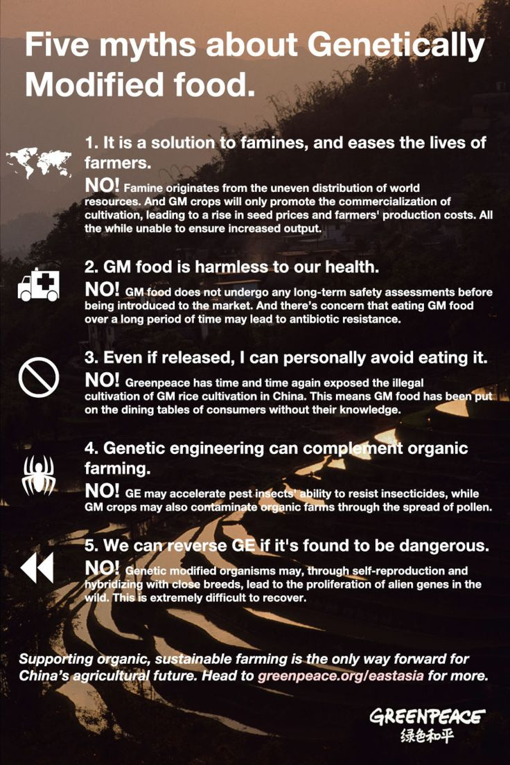best ideas about fight against gmo s health five myths surrounding genetically modified foods busted gmo