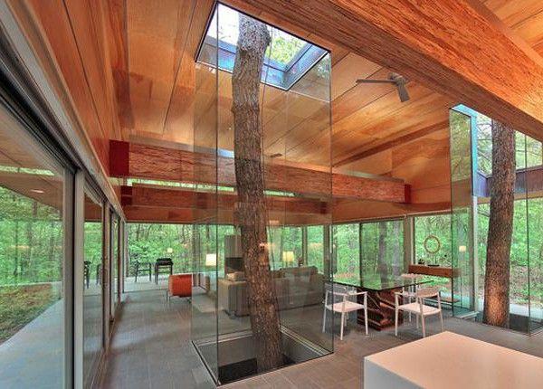 10 удивительных домов, построенных вокруг деревьев