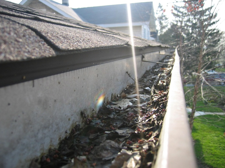 Dallas Fort Worth and surrounding suburb homeowners can expect exceptional service from Ned Stevens Gutter Cleaning and their over four decades of experience. Ned Stevens provides quality service for gutter cleaning, gutter installation, gutter repair and affordable maintenance plans.