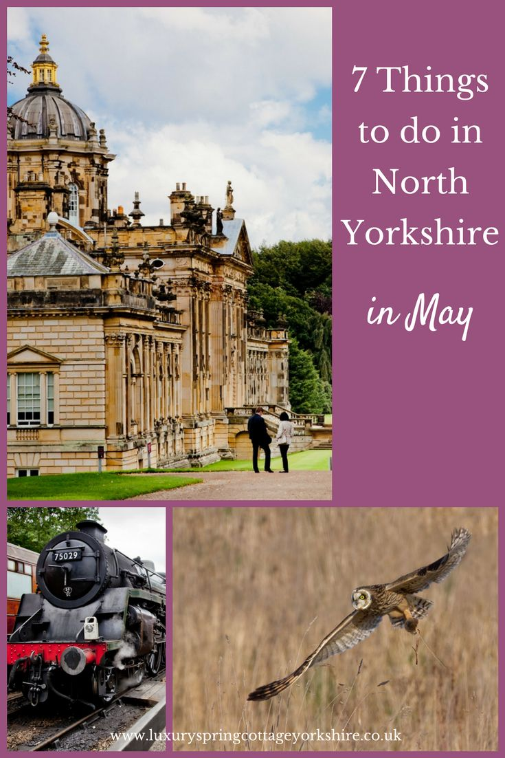 7 Recommended things to do in North Yorkshire in May  When its warmer and you can make the most of the longer evenings, here are my recommendations on what you should see and do in North Yorkshire.  Karen