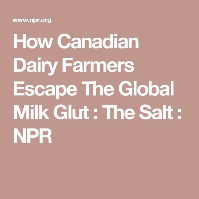 How Canadian Dairy Farmers Escape The Global Milk Glut : The Salt : NPR