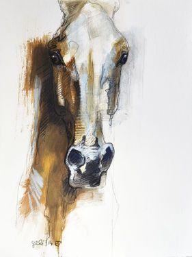 Horse drawing by Benedicte Gele