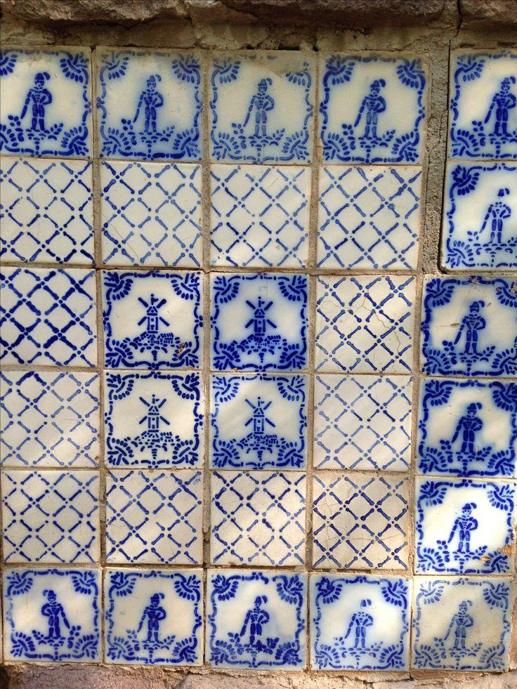 Azulejo. Maipu, Mza. Argentina.