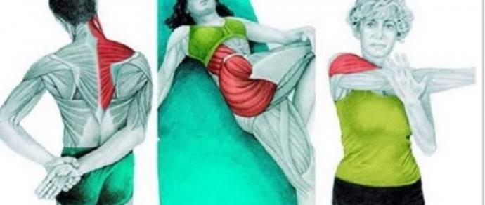 36 exercícios para você fazer em casa e se livrar das dores nas costas e articulações! - http://comosefaz.eu/36-exercicios-para-voce-fazer-em-casa-e-se-livrar-das-dores-nas-costas-e-articulacoes/