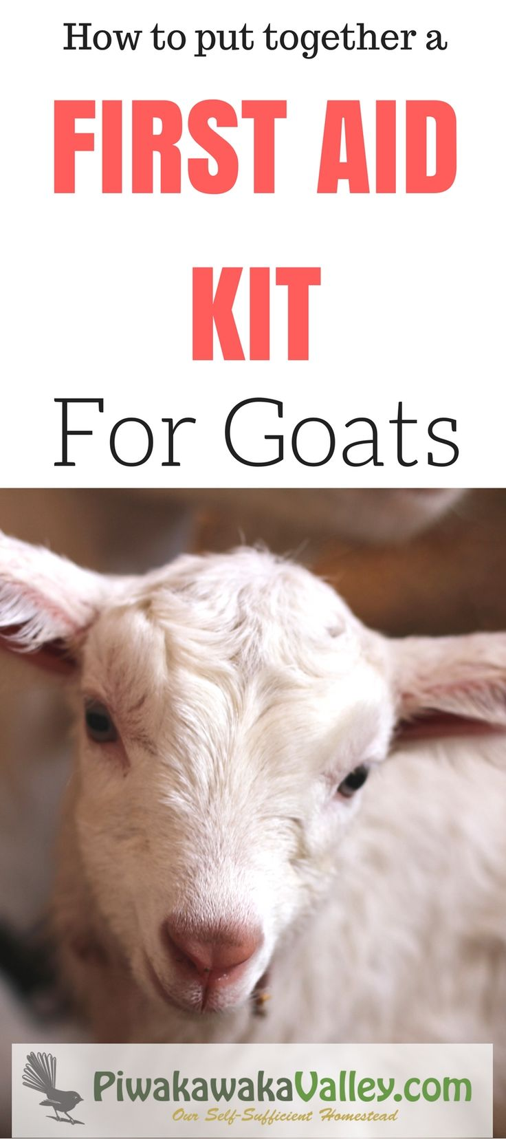 Do you have a first aid kit for your goats?