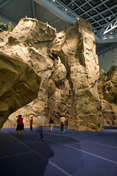 natural looking rock climbing walls Rockclimbing