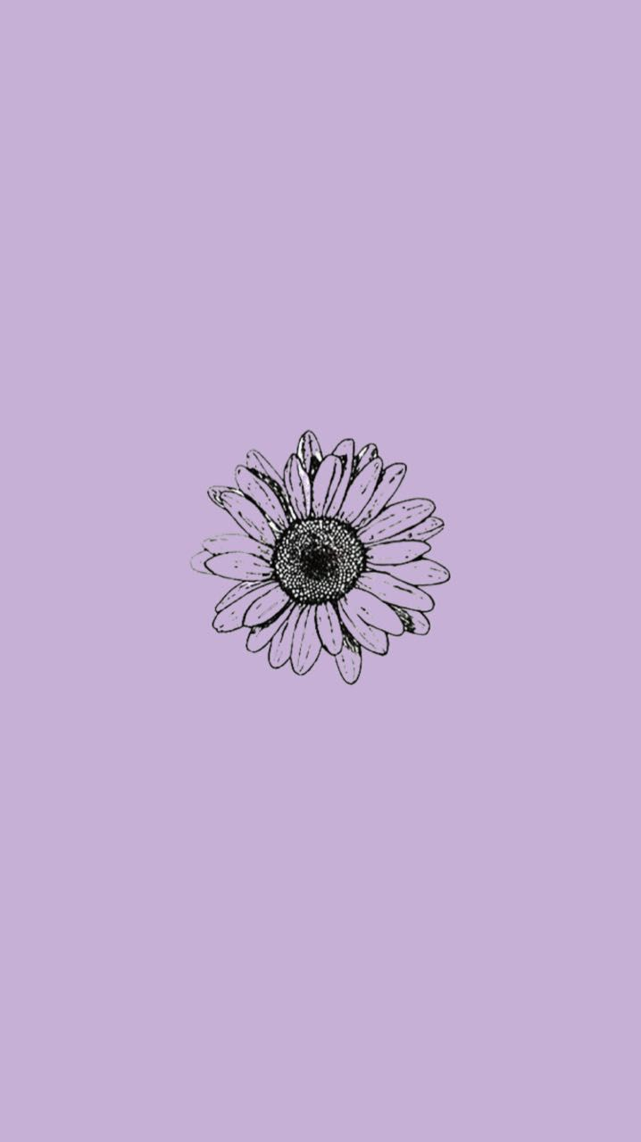 Violet Backgrounds Phone Wallpapers Aesthetic Iphone Wallpaper