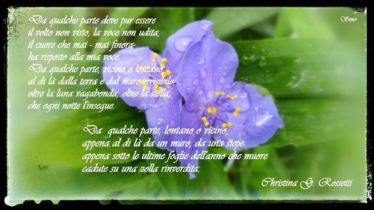 Christina  G. Rossetti- Da qualche parte deve pur essere.    Poesie