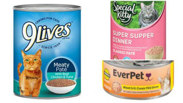 BREAKING NEWS RECALL ALERT: Canned Cat Food Recall Includes 9 Lives & Special Kitty - iHeartCats.com