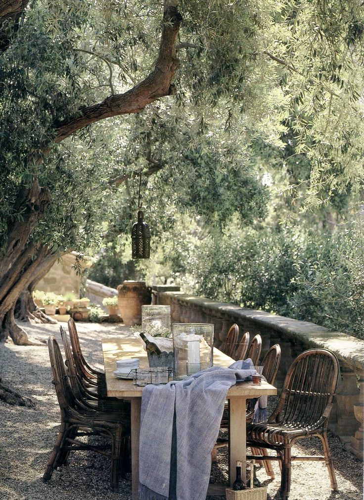 backyard, mediterranean light, furnitures and those trees..