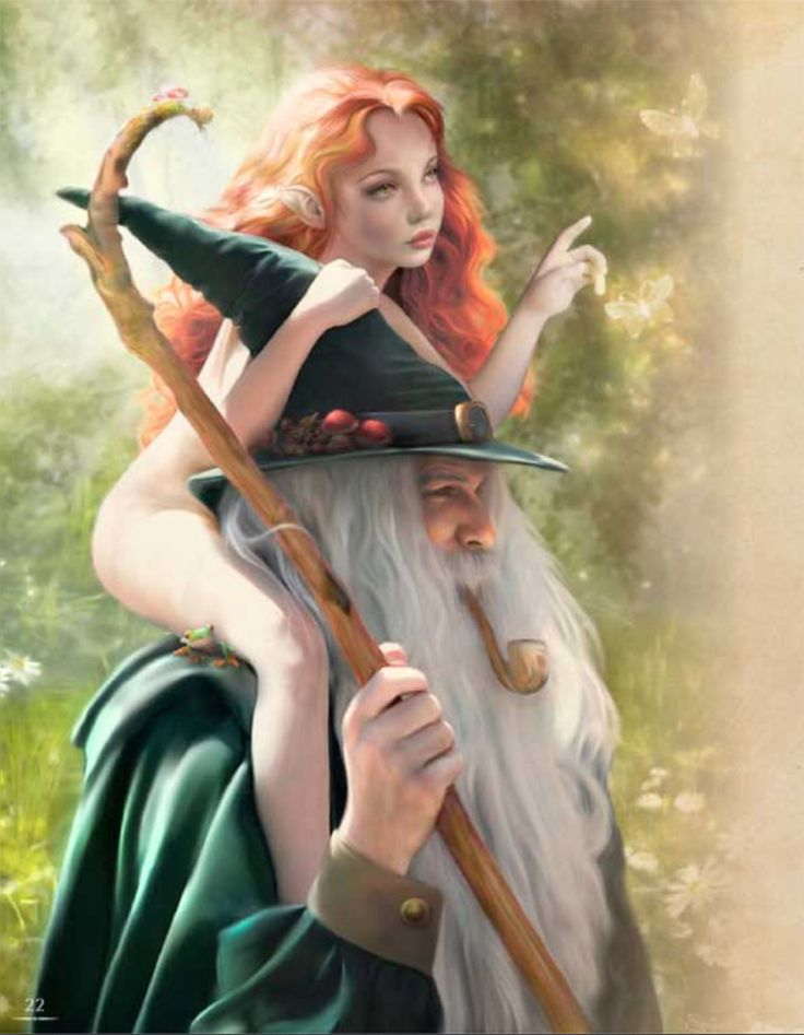 Wizard and fairy .