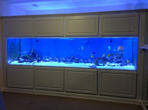 NEW 300 Gallon Acrylic Aquarium - Fish Tank - Factory Direct