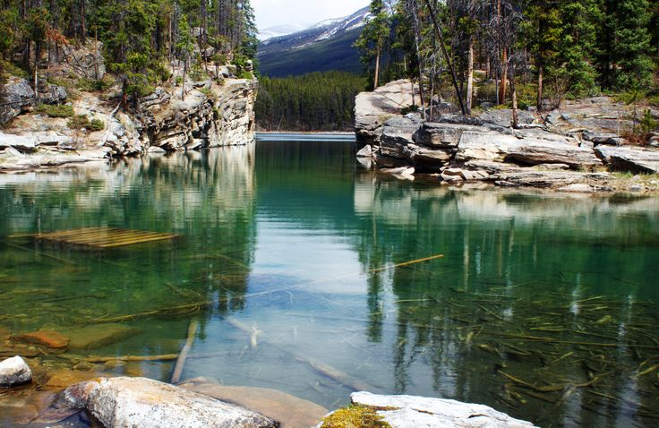 Horseshoe Lake, Jasper National Park, Alberta
