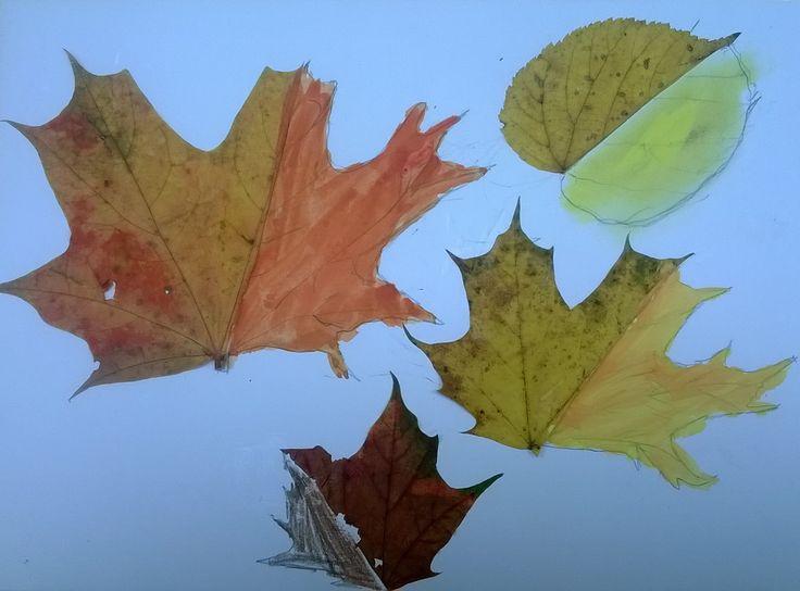 domalování listů, podzim 2015