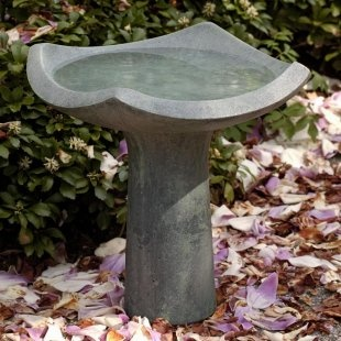 """Love this style, if it was about 12"""" taller: Oslo Bird Bath"""