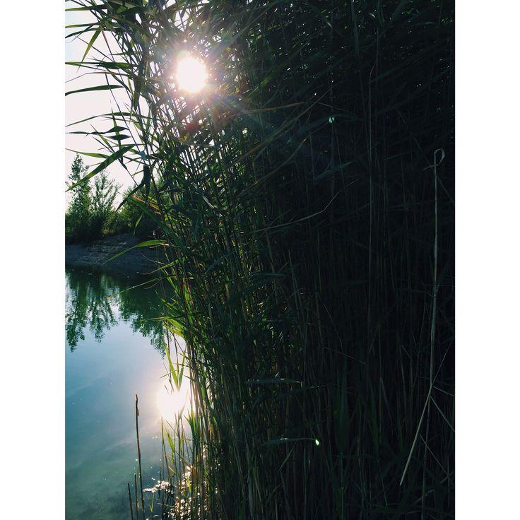 #nature #lake