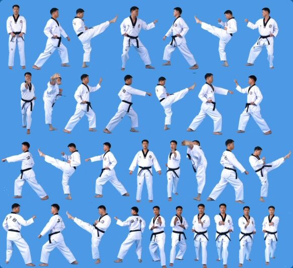 17 best images about poomsae taegeuk forms on