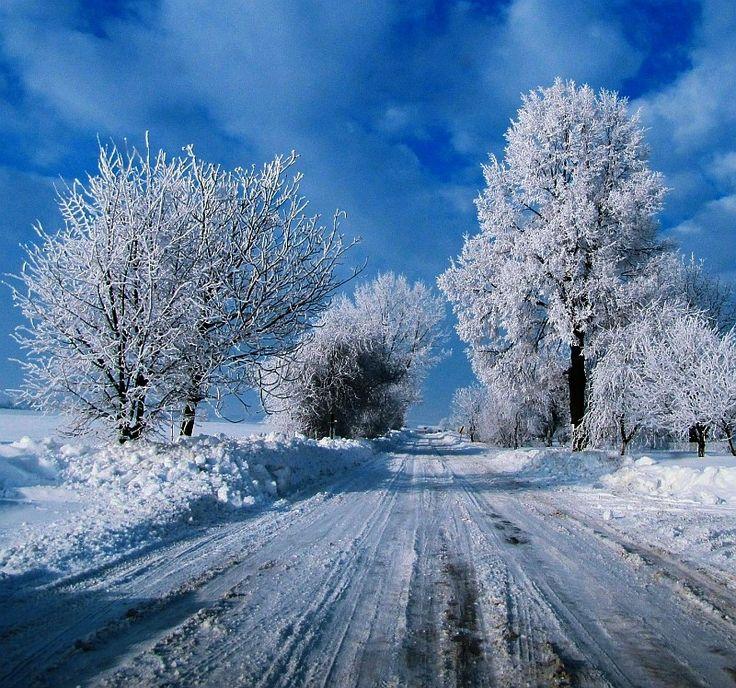 Zima přichází, na horách začne sněžit a mrznout | Jižní Čechy Teď!