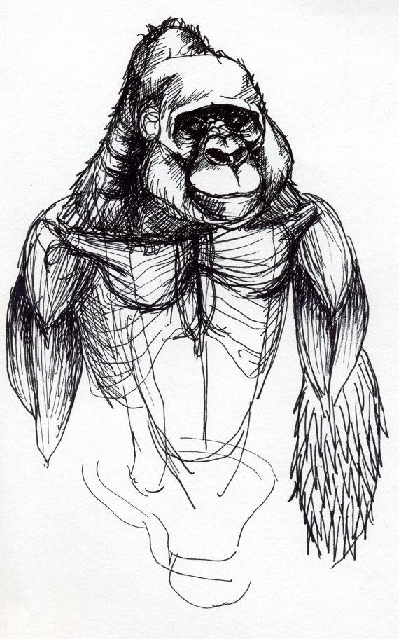 Gorilla Drawing Giclee Print by BeastsandBirdies on Etsy, £30.00